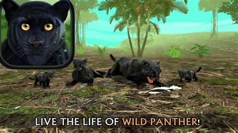 Wild Panther Simulator 3D - By Turbo Rocket Games