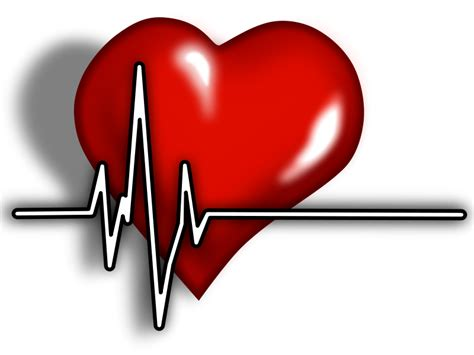 Cardiac clipart 20 free Cliparts   Download images on