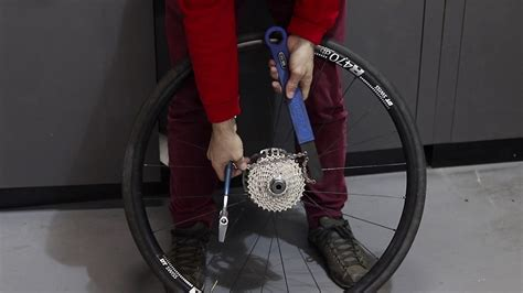 How To Remove a Shimano Freehub Cassette | Tech Tip