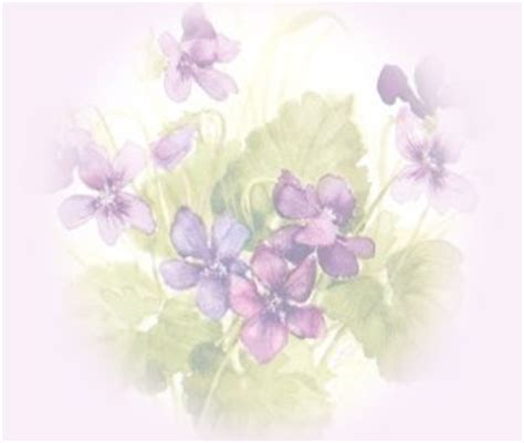 Free Happy Mother's Day MySpace Backgrounds Codes